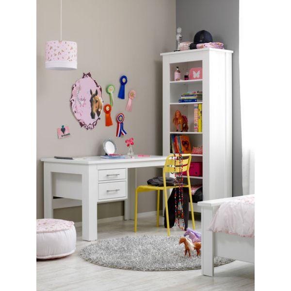 bureau en boekenkast